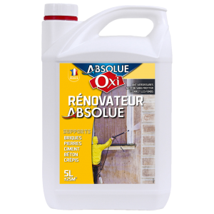 RENOVATEUR ABSOLUE